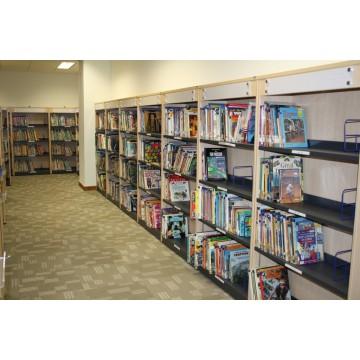 Library Shelf 3