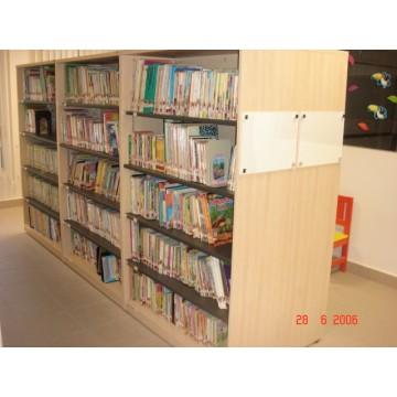 Library Shelf 4